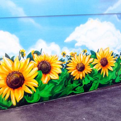 Sonnenblume Naturkost
